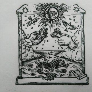 signum symbolus naturae templum